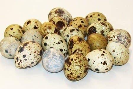 Перепелиные яйца - польза и вред для женщин, мужчин и детей, применение